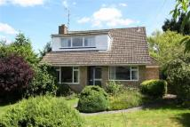 Detached house for sale in London Road, Liphook...