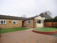 Semi-Detached Bungalow to rent in Fishbourne Road West...