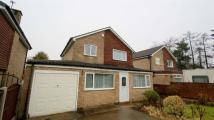 3 bed Detached home to rent in Turnberry Rise...