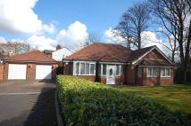 Detached Bungalow for sale in Ingleholme Gardens...