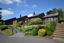 Fairfield Gardens Semi-Detached Bungalow to rent