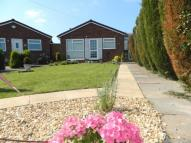 Detached Bungalow to rent in Winchester Gardens...
