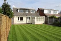 Detached Bungalow for sale in Queens Park, Bournemouth