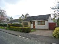 Bungalow to rent in Martin Place, Eskbank...