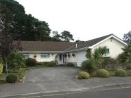 Detached Bungalow for sale in Canford Cliffs