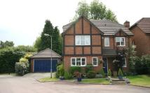 Detached home to rent in Tarrant Green, Warfield...