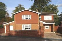 Detached property to rent in Albert Road, Bracknell...