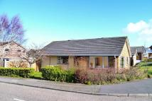 Detached Bungalow in Canford Heath