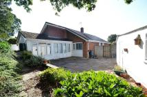 3 bedroom Detached Bungalow for sale in Corfe Mullen