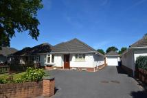 3 bed Detached Bungalow for sale in Broadstone