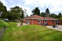 4 bedroom Detached Bungalow in Lytchett Matravers