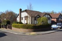 5 bedroom Detached house in Canford Heath West