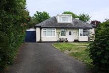 Detached Bungalow for sale in Bridport