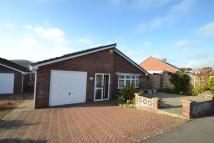 Detached Bungalow in Bridport Town