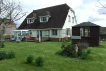 Detached Bungalow for sale in Furzehill
