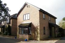 Detached property for sale in Fordingbridge