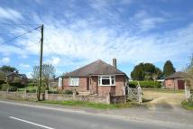 Fordingbridge Detached Bungalow for sale