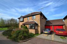 Detached house for sale in Fordingbridge