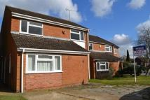 Cranbourne Drive house to rent