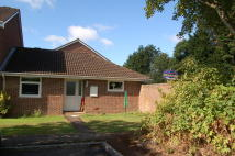 3 bedroom Semi-Detached Bungalow in Ringwood