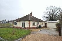 Detached Bungalow to rent in Longham, Ferndown