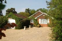 3 bedroom Detached Bungalow to rent in Abbey Road, West Moors