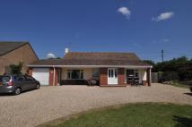 House Share in Longham