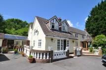1 bedroom Flat in Corfe Mullen, Wimborne