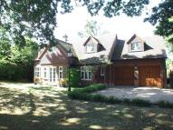 Detached property in West Wellow