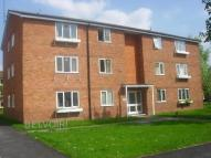 Flat to rent in Nicholson Court, Hereford
