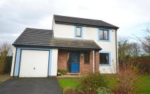 Detached property for sale in Derwent Meadows...