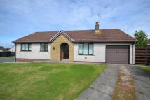 3 bed Detached Bungalow to rent in Sycamore Road, Maryport...