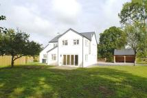 Detached property for sale in Cranborne