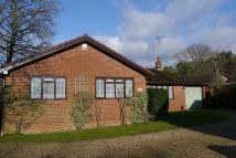 Verwood Detached Bungalow for sale