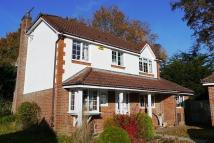 Verwood Detached property for sale