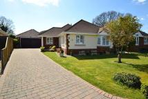 Detached Bungalow for sale in Verwood