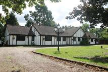 Detached house for sale in Black Lake Close, Egham...