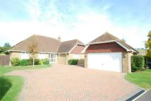 4 bed Detached Bungalow in Lenham