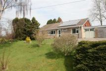 2 bed Detached Bungalow for sale in Lluest Lane...