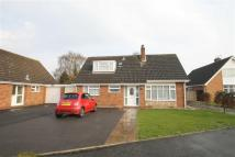 4 bedroom Detached Bungalow to rent in Church Close, Bicton...