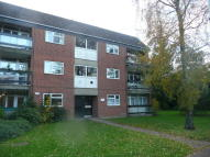 1 bed Flat in Ives Road, Old Catton...