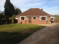 Detached Bungalow to rent in Fakenham Road, Drayton...