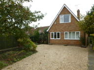 Detached Bungalow to rent in Low Road, Drayton...