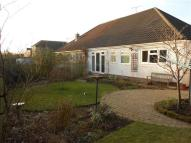 Semi-Detached Bungalow to rent in Edgemoor Drive Irby