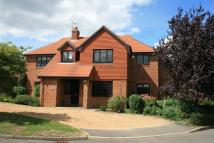 5 bedroom Detached home to rent in Kinghorn Park, Maidenhead