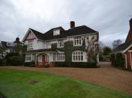 Studio flat in Mayfield Road, Weybridge...