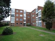 Flat to rent in Tasman Court...