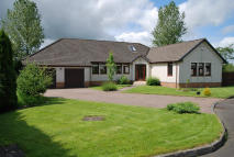 5 bedroom Detached Bungalow for sale in Moss Haw, Moscow...