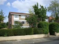 Thornbury Road Apartment to rent