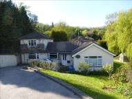 Semi-Detached Bungalow to rent in Beauharrow Road...